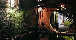 The pond at artists' residency Rimbun Dahan